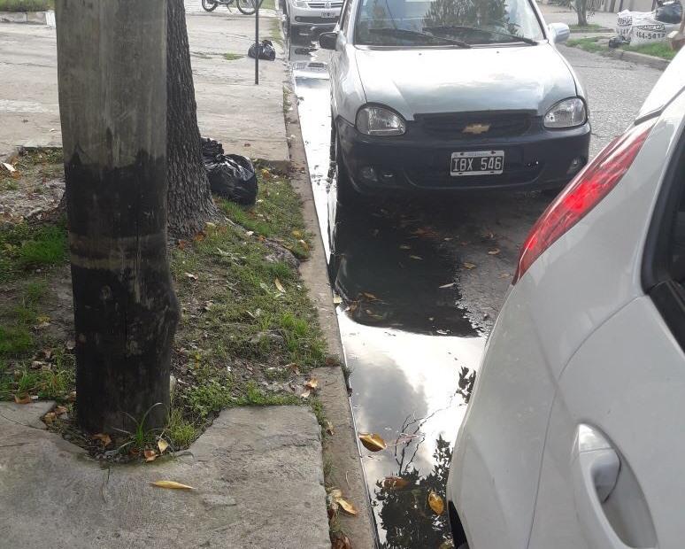 Una vecina se comunicó con la redacción de BerissoCiudad ante la situación que atraviesan en calle 164 entre 14 y 15, por la presencia de agua contaminada en uno de los cordones.