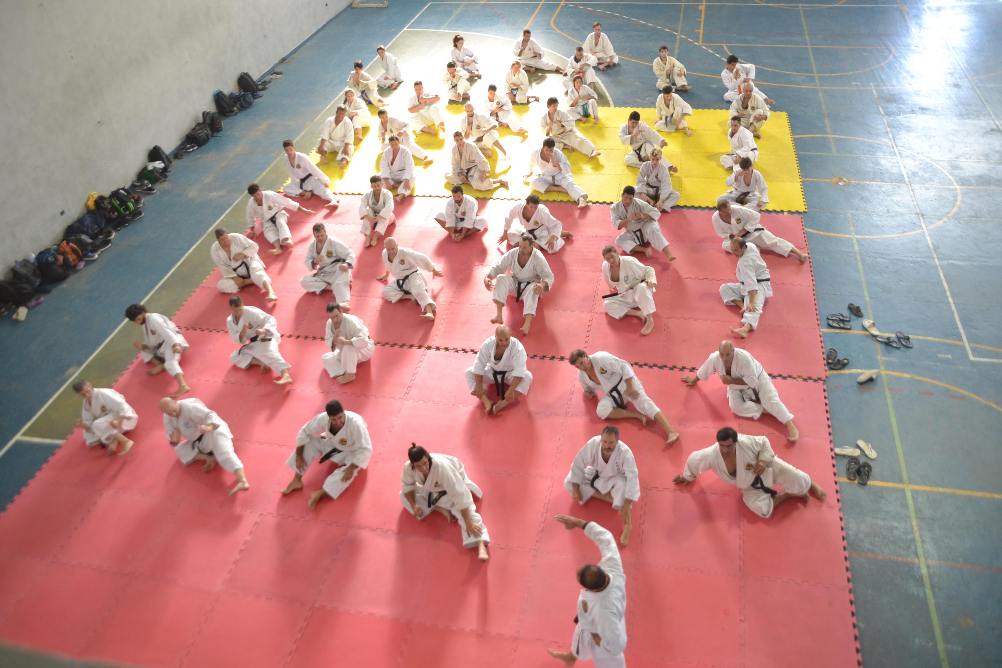 """Este fin de semana se llevó a cabo en las instalaciones del Gimnasio Municipal """"Mariano Freyre"""" un encuentro denominado """"Okinawa Goyu-Riu Karate Do Kyokai"""" (OGKK), donde se encontraron diferentes escuelas y estilos de esta disciplina tanto de Berisso como de La Plata."""