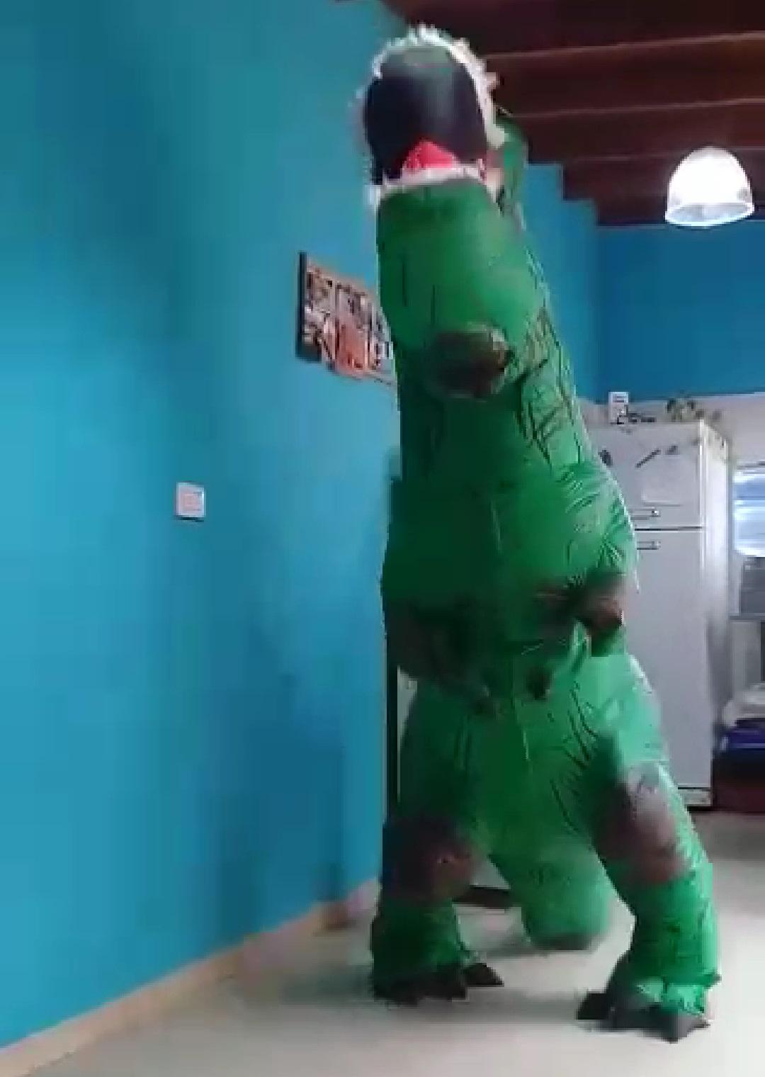 """""""Roxi Rex"""": La dino berissense que causa furor en las redes"""
