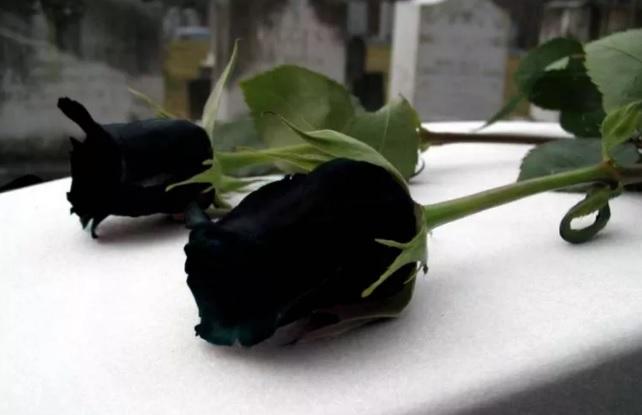 El intendente Jorge Nedela expresó sus condolencias por el fallecimiento de la madre del presidente del Partido Justicialista de la ciudad de Berisso, Ramón Garaza.