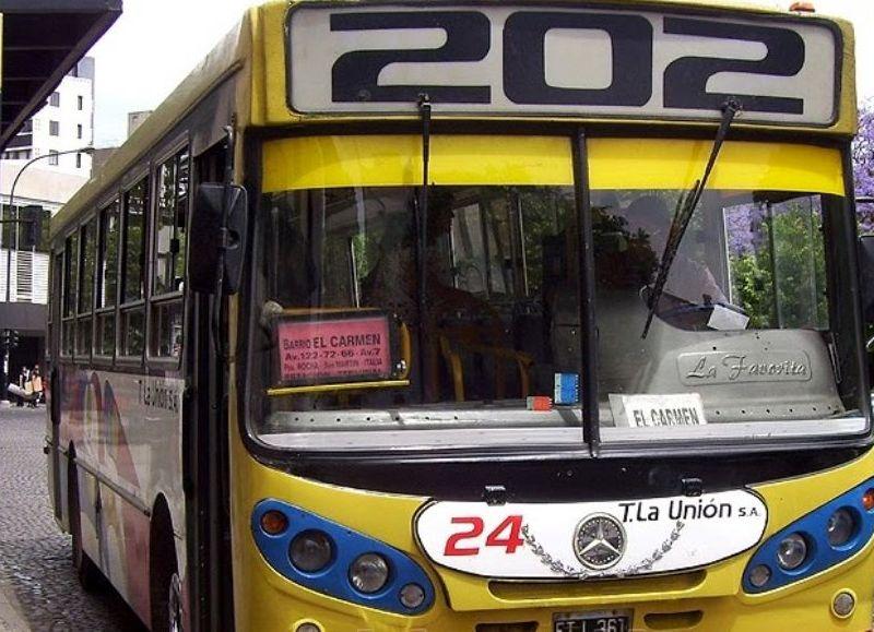 Colectivos, taxis y particulares: Certificado obligatorio y medidas de prevención