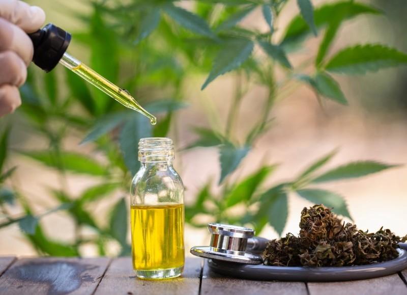 Un aceite que es vital para cientos de enfermos.