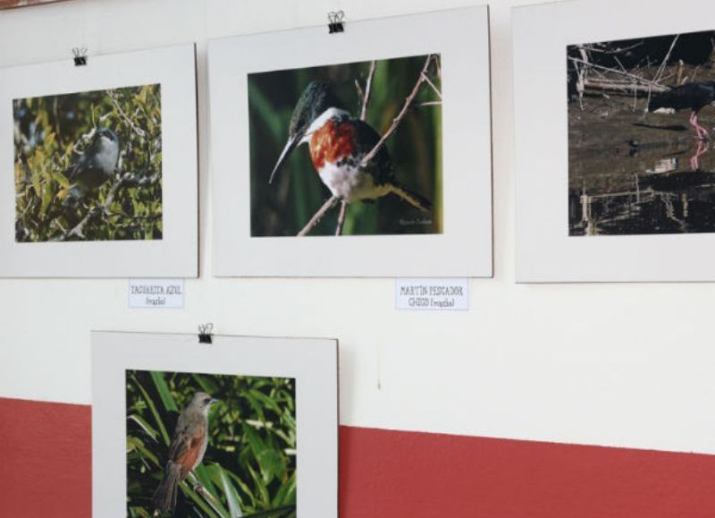 """El pasado viernes quedó inaugurada la muestra fotográfica denominada """"Tesoros ocultos"""" de Ricardo Cadenas en el salón Mario Ortiz que podrá ser visitada hasta el 1 de noviembre."""