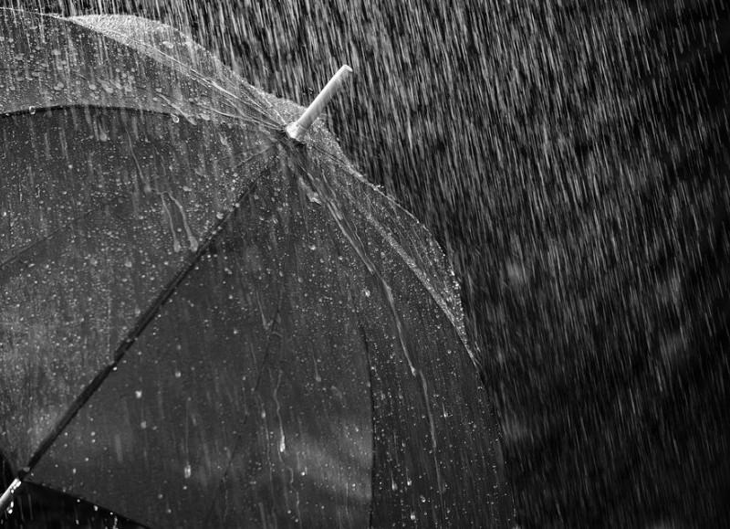 Martes lluvioso.
