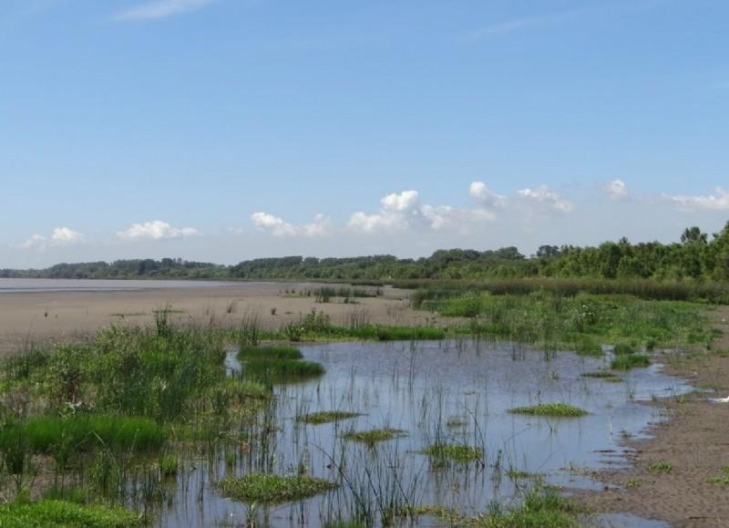 El primer encuentro se centrará en las playas y costa del Río de la Plata.