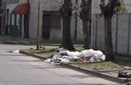 Residuos desparramados en la vereda: Tras días sin recolección, incipientes basurales