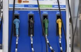 """Pujol aseguró que """"no habrá desabastecimiento"""" de combustible"""