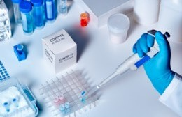 Curva ascendente: Se registraron 24 nuevos casos de coronavirus en Berisso