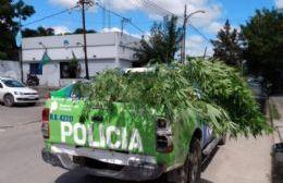 Allanamiento en El Carmen: Secuestran droga y un arma