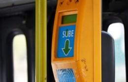 Recomendaciones de la Línea 202 ante la reanudación del servicio