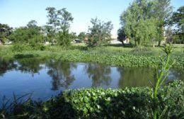 Humedal urbano de nuestra región.