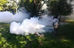 En La Franja esperan una respuesta ante la solicitud de fumigación