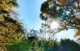 Festival del Monte: Un encuentro con la historia y los sentidos