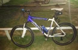 Denunció el robo de su bicicleta y pide desesperadamente recuperarla