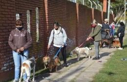 Comenzó a funcionar la veterinaria móvil para la atención primaria de mascotas