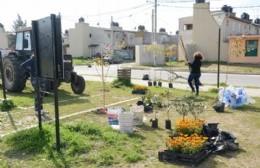 Repararon los daños perpetrados en Plaza Alfonsín del Barrio Eva Perón