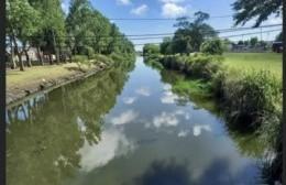 Autoconvocados marchan al Concejo en defensa del humedal urbano del canal de la Génova