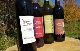 En modalidad virtual, se viene la Fiesta del Vino de la Costa