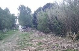 El camino del pantano: El resultado de una obra inconclusa