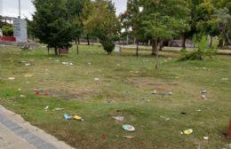 Parque de residuos: La postal de Berisso luego del corso