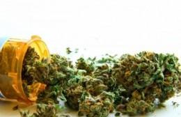 Nuevo encuentro de la Cátedra Libre de Cannabis y Salud de la UNLP
