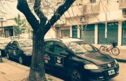 Modalidad de circulación en taxis: Sólo un pasajero, tapaboca y alcohol en gel