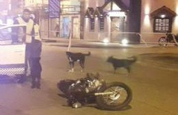 Nuevamente una moto involucrada.