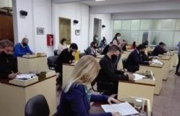 Concejo Deliberante: Salud y perfiles truchos a la orden del día