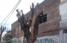 Expedientes y reclamos ante la degradación ambiental