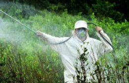 Costa Rica le pone un freno al uso del glifosato, origen de diversas enfermedades
