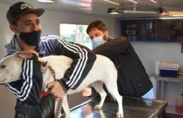 Por caso de Covid, el servicio municipal de Veterinaria permanecerá sin atención
